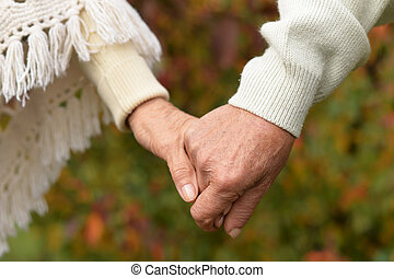 恋人, 一緒に把握, 手