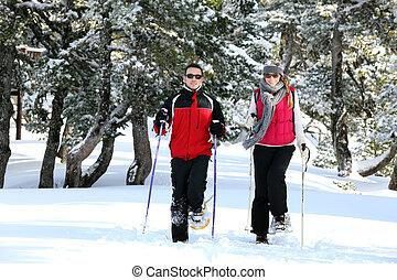 恋人, 一緒に, スキー