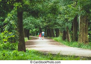 恋人, 公園, 歩くこと