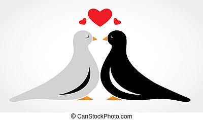 恋人, 愛, 落ちる, 鳥