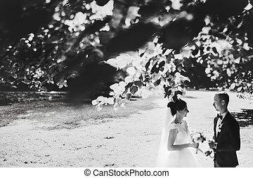 恋人, 結婚式, ブランチ, 後ろ一見