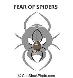 恐い, 恐れている, ある, spiders., 昆虫, 恐れ