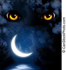 恐怖, 夜晚