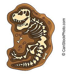 恐竜, fosil