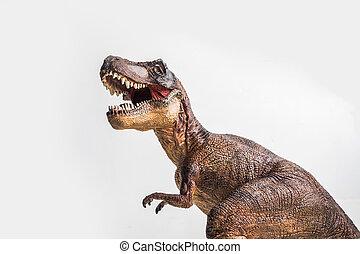 恐竜, t-rex, tyrannosaurus, 白, 背景
