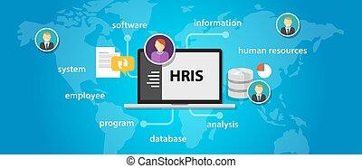 情報, 会社, システム, 適用, hris, 人的資源, ソフトウェア