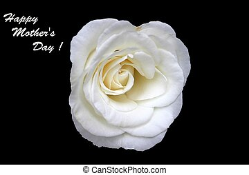 愉快的  母親節