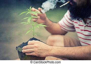 愉快, 人, 由于, cannabis植物