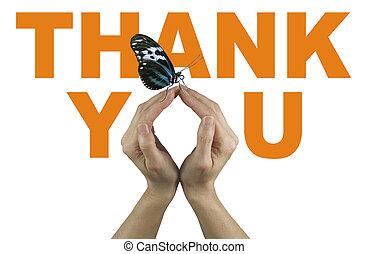 感謝しなさい, 蝶, あなた, 発言