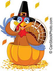 感謝祭トルコ, 中に, ∥, カボチャ