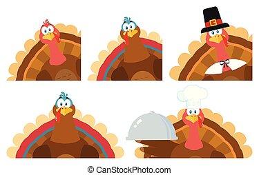 感謝祭トルコ, 鳥, コレクション, -, 4