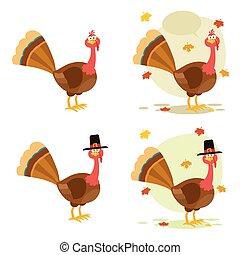 感謝祭トルコ, 鳥, コレクション, -, 5
