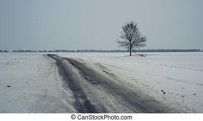 憂うつである, 孤独, 木の 冬, 道
