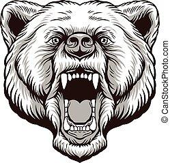 憤怒, 熊, 頭
