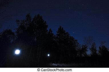 懐中電燈, 上に, a, 星が多い, 夜