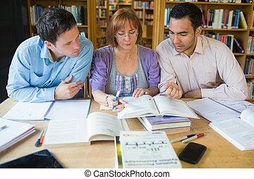 成人, 学生, 学习, 一起, 在中, the, 图书馆