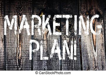 成功した, plan., thoughts., ビジネス, 木製である, 型, 提示, 考え, 印, 意図, 木, テキスト, 広告, 背景, 写真, 野生, 作戦, メッセージ, 概念, マーケティング, 市場