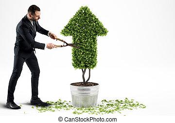 成長する, レンダリング, 会社, 3d, 経済