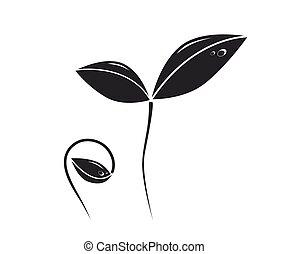 成長する, 植物, シルエット