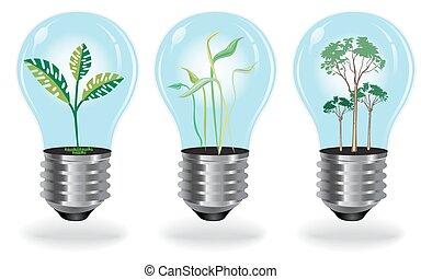 成長する, 植物, 電球, セット