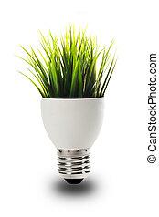 成長する, 電球, 草, から