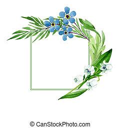 我, 忘記, square., 百合花, set., 裝飾品, 插圖, 水彩, flowers., 背景, 不, 山谷, 邊框, 框架