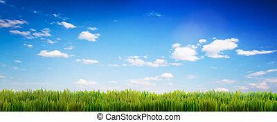 戸オープン, 緑の草