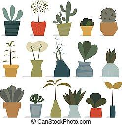 房子 植物, 在, 罐