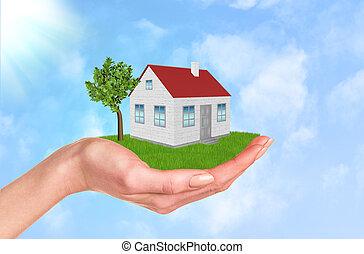 手の 保有物, 家