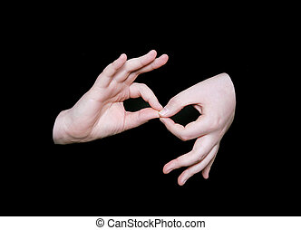 手話, 単語, 解釈