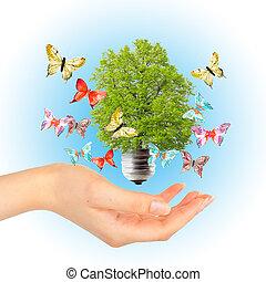 手, そして, 緑の木, 中に, 電球