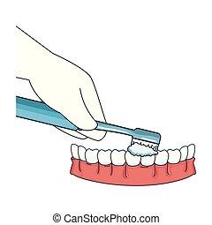 手, ブラシ, 歯