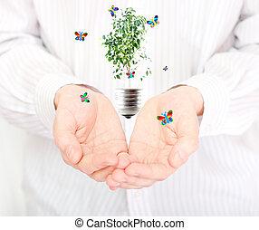 手, 同时,, 植物