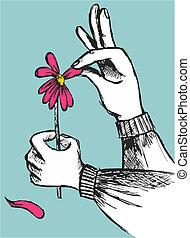 手, 引っぱる, 離れて, ∥, 花弁, の, a, 赤い花, 上に, スカイブルー, バックグラウンド。, ベクトル,...