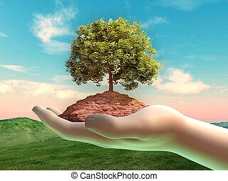 手, 杯形, 土壌, 木, いくつか