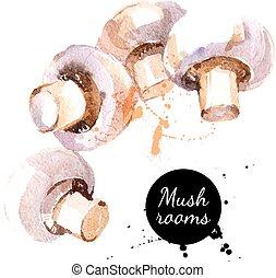 手, 水彩画, バックグラウンド。, v, 引かれる, 白, mushrooms., 絵