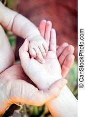 手, 3, 家族, 1(人・つ)