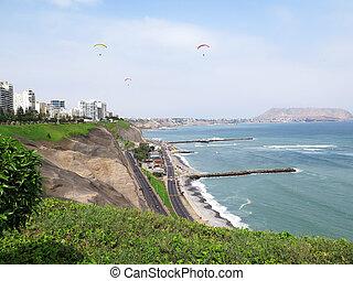 打撃, 写真, lima-peru, -, 海岸, 緑, 浜, 株