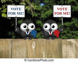 投票, 私, 政治家
