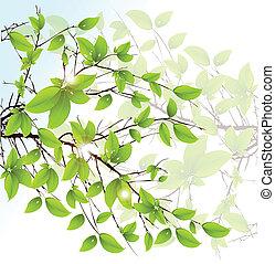 抽象的, バックグラウンド。, ベクトル, 緑, 花, 葉