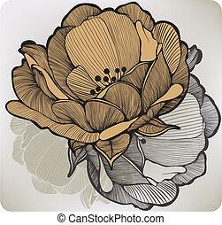 抽象的, ベクトル, illustration., flower., 開くこと