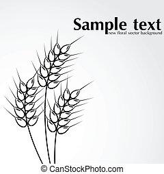 抽象的, 小麦, 背景