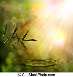 抽象的, 東洋人, 背景, ∥で∥, 竹, 群葉