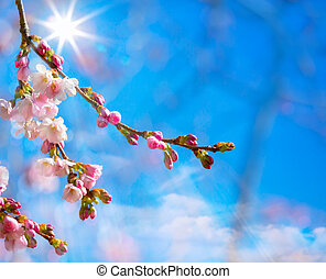 抽象的, 背景, ボーダー, 花, 春, ピンク