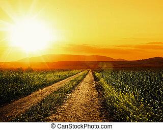 抽象的, 背景, 環境, sun., デザイン, あなたの, 道