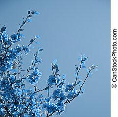 抽象的, 花, 背景