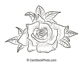 抽象的, 隔離された, ベクトル, 背景, 白い花