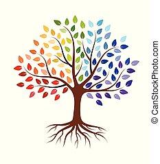 抽象的, 隔離された, leaves., 白, 定着する, 木, カラフルである, バックグラウンド。