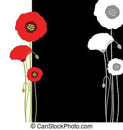 抽象的, 黒い背景, ケシ, 白い赤