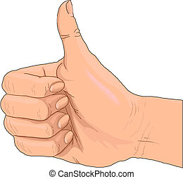 拇指, 向上